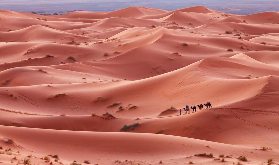 48 - Caravana (Maroc)